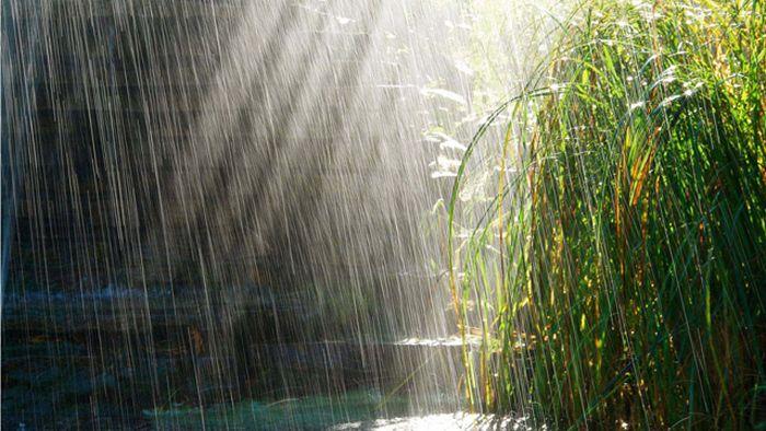 Beautiful Photos of Rain (55 pics)
