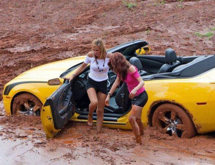 Funny Car-Themed Photos. Part 5 (50 pics)