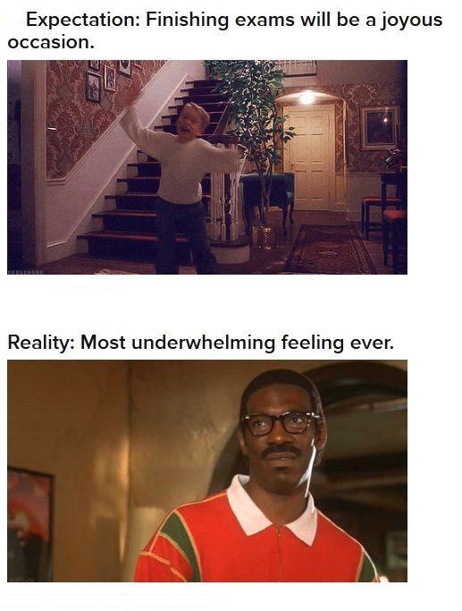 Finishing Your Exams, Expectation Vs. Reality (23 pics)