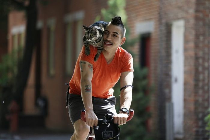 Cyclist and His Cat (21 pics)