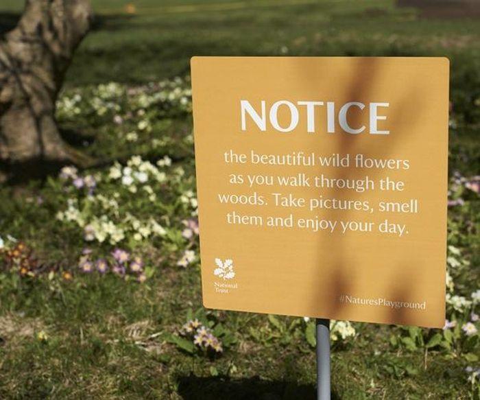 Positive Warning Signs (9 pics)