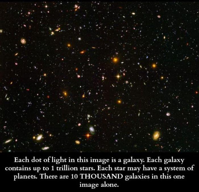 Scientific Facts (34 pics)