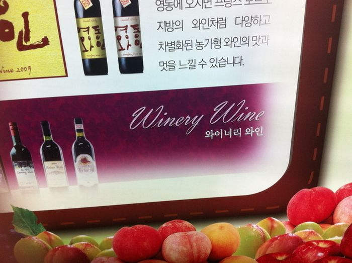 Things You Can Buy in South Korea (29 pics)
