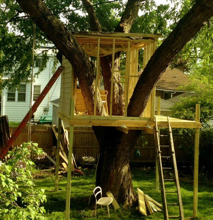 How to Build a Treehouse (15 pics)