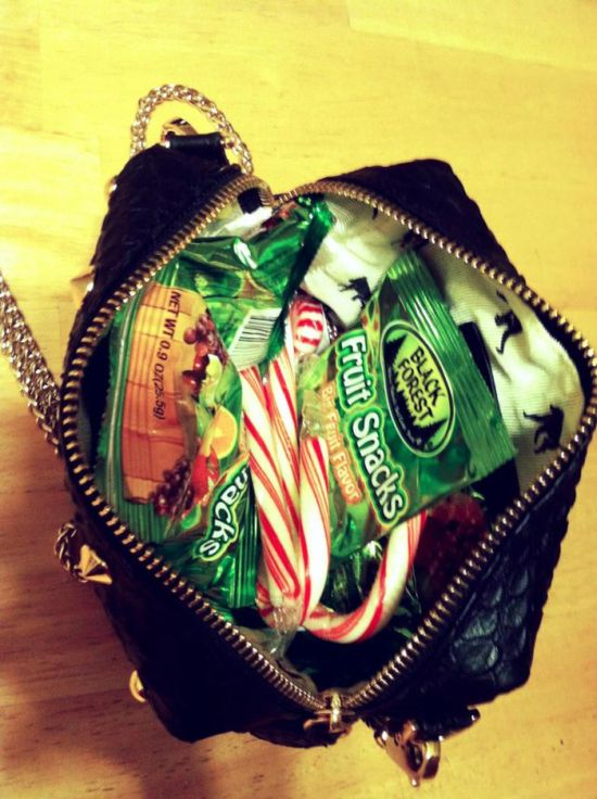 Girlfriend's Purse (14 pics)