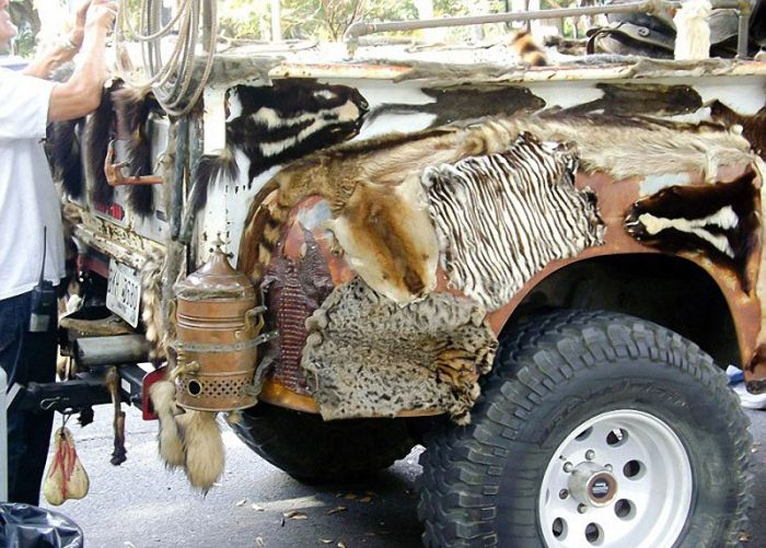 WTF Taxidermy Truck (10 pics)