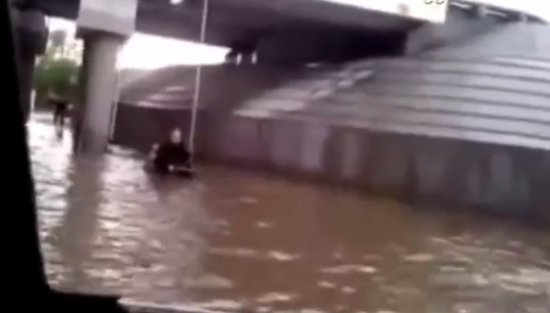 Dog Saving a Man in Wheelchair During The Flood