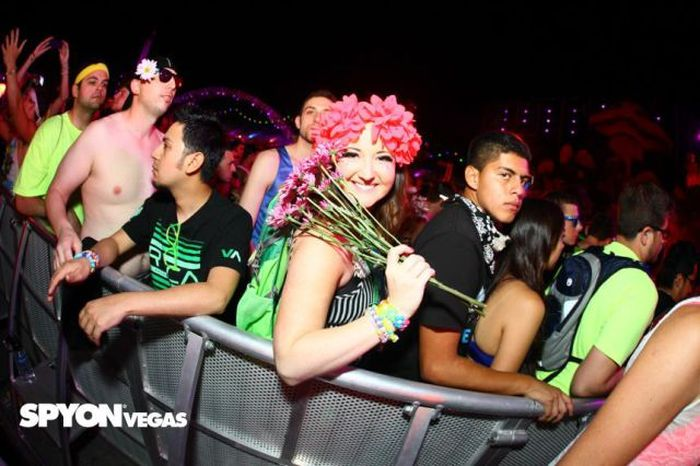 Ladies of the Electronic Daisy Festival in Las Vegas (72 pics)