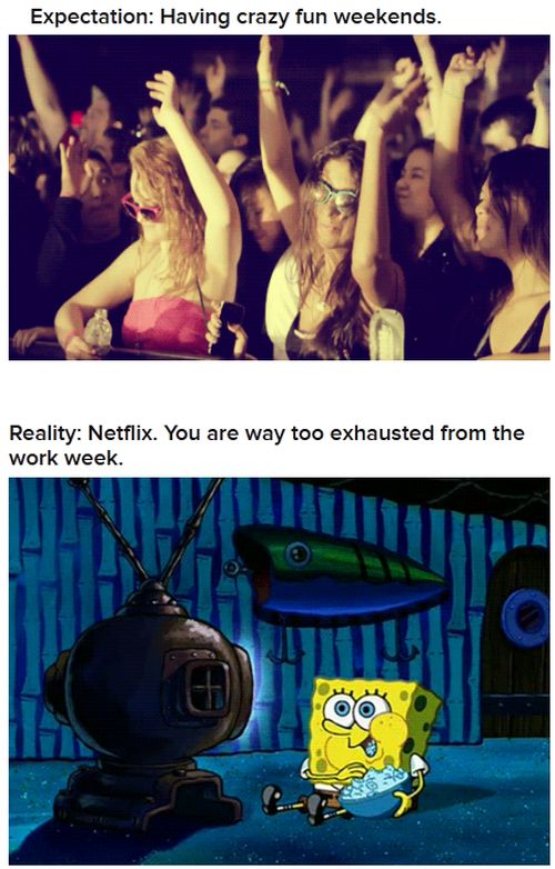Expectations Vs. Reality (22 gifs)