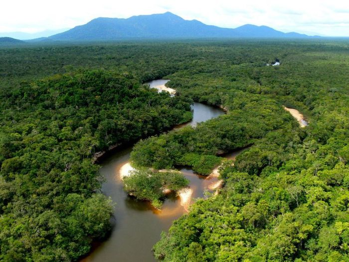 Amazon Forest Photo Tour (36 pics)
