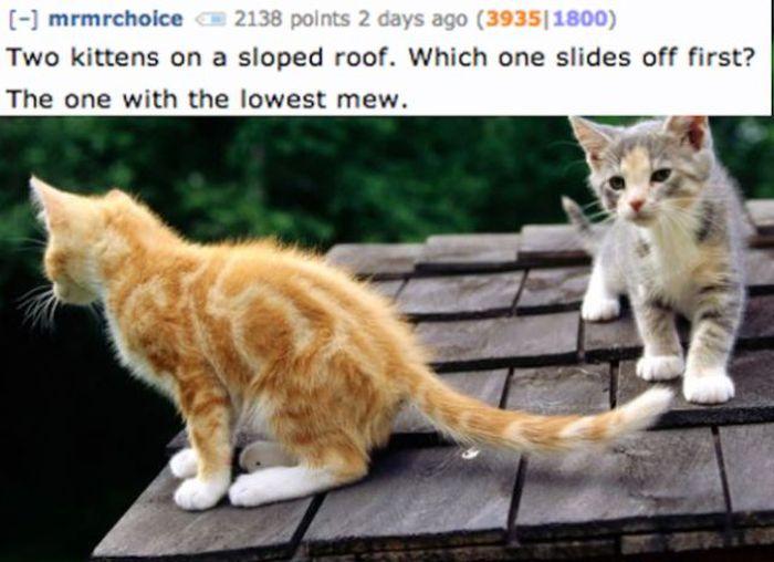 Jokes for Smart People (21 pics)