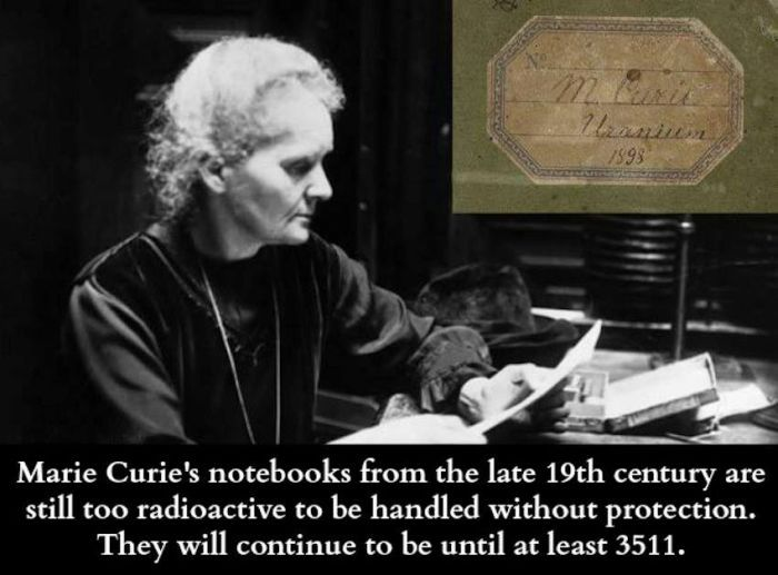 Interesting Facts About Science (36 pics)