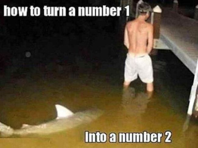 Funny Pictures with Captions (36 pics)