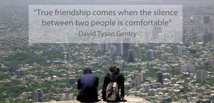 Famous Quotes on Friendship (15 pics)