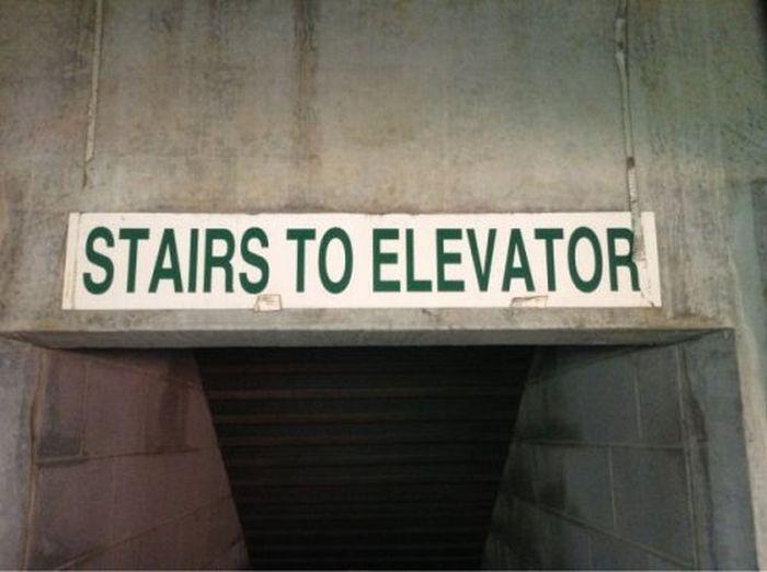 WTF Signs. Part 36 (35 pics)