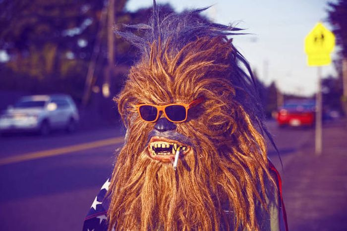 Wookiees in Real Life (28 pics)