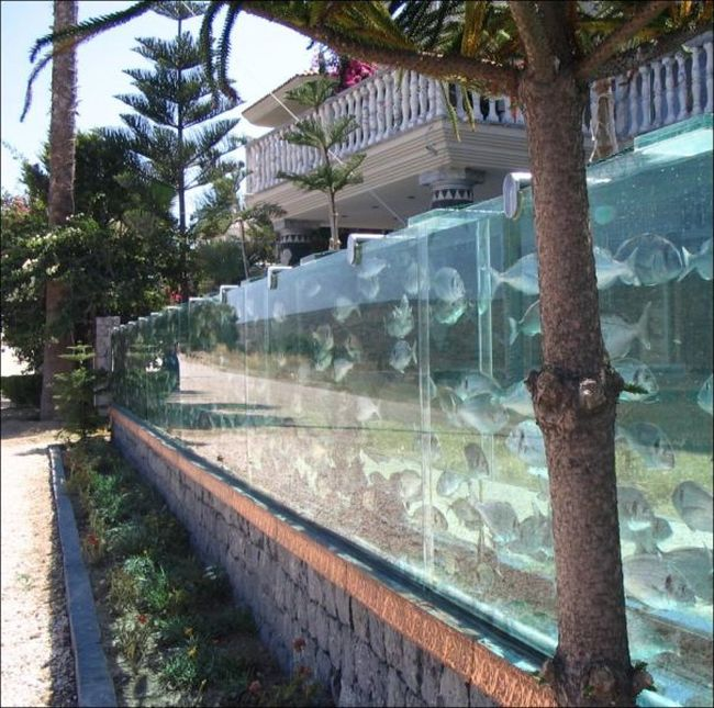 Aquarium Fence (4 pics)