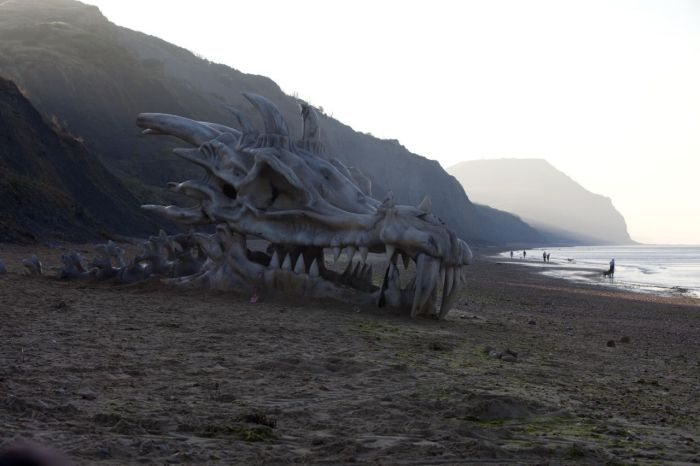Huge Dragon Head (4 pics)