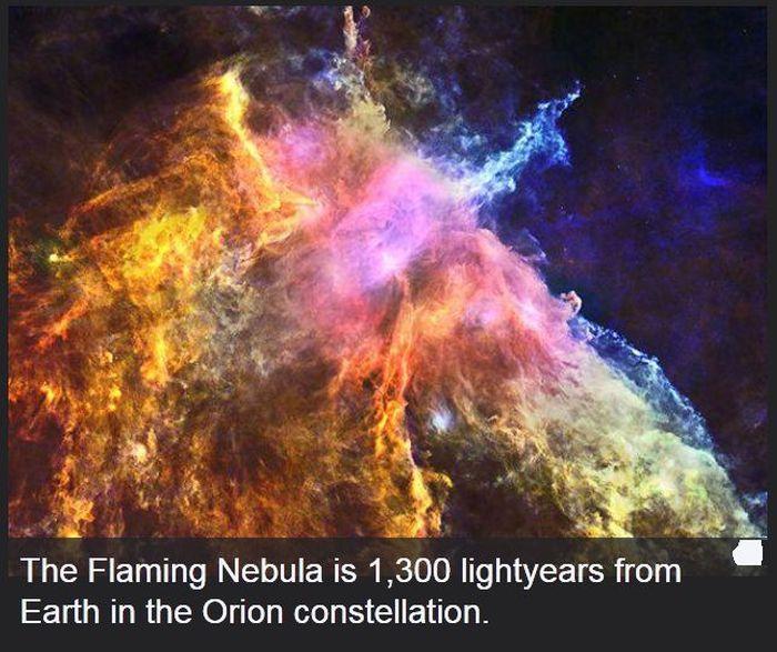 Interesting Scientific Facts (47 pics)