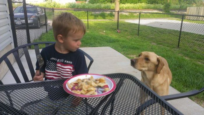 Kid and Dog Friendship (24 pics)