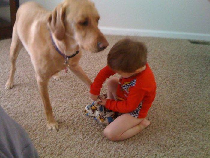 el perro, mejor amigo del niño