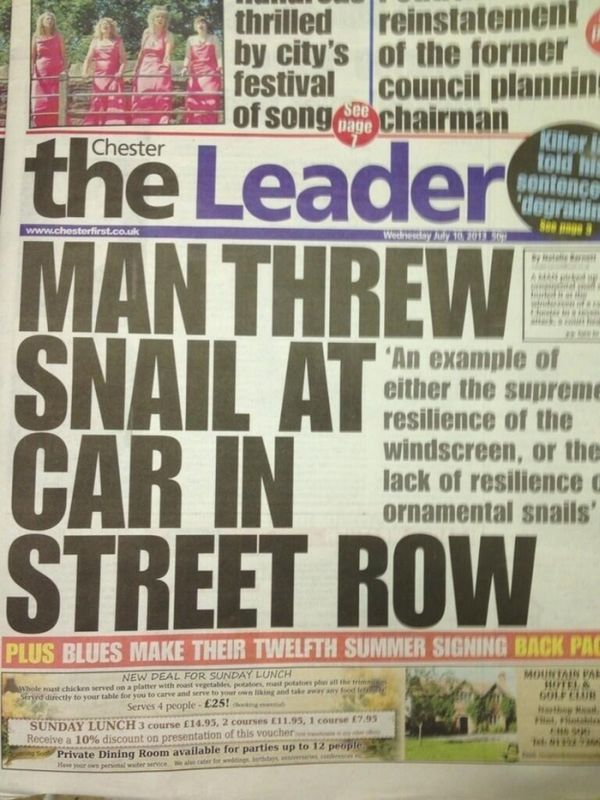 Not So Important News Stories (24 pics)