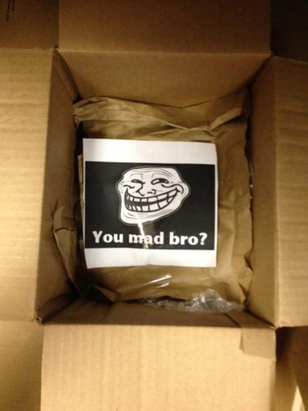 eBay Prank. Smart or Stupid? (6 pics)
