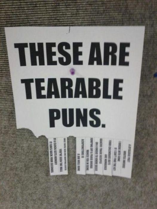 Funny Puns. Part 8 (45 pics)