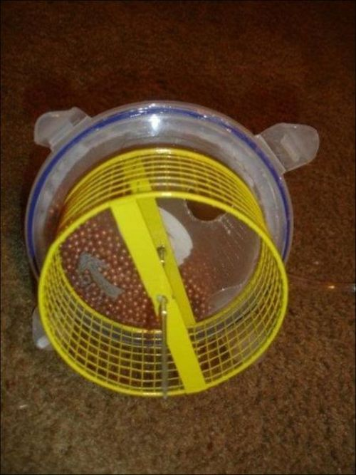 Hamster Submarine (7 pics + video)