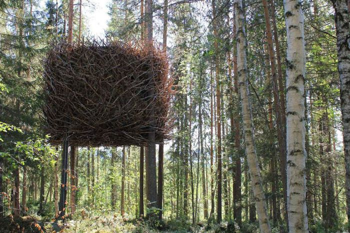 The Most Amazing Treehouses (17 pics)