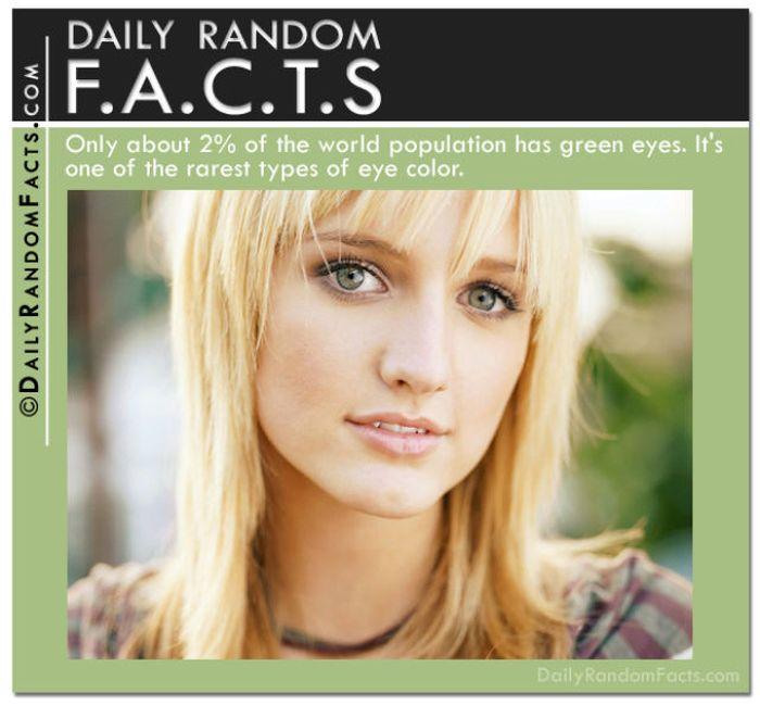 Random Facts (37 pics)