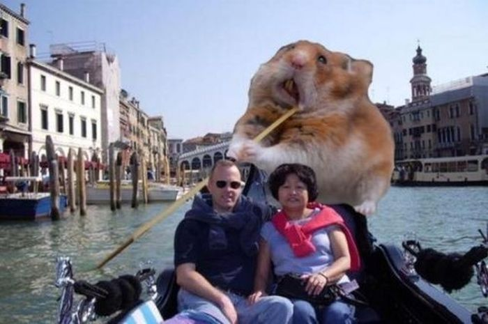 Photoshopped Photos (40 pics)