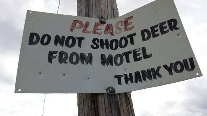 WTF Signs. Part 37 (30 pics)