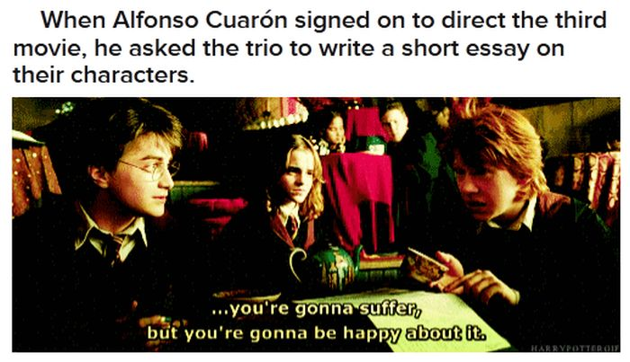 Interesting Facts about Harry Potter Movies (16 pics)