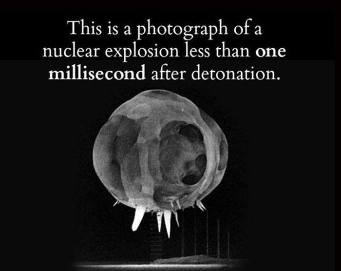 Interesting Facts (23 pics)