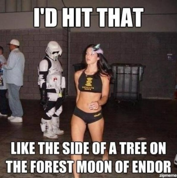 "Funny ""Star Wars"" Pictures (38 pics)"
