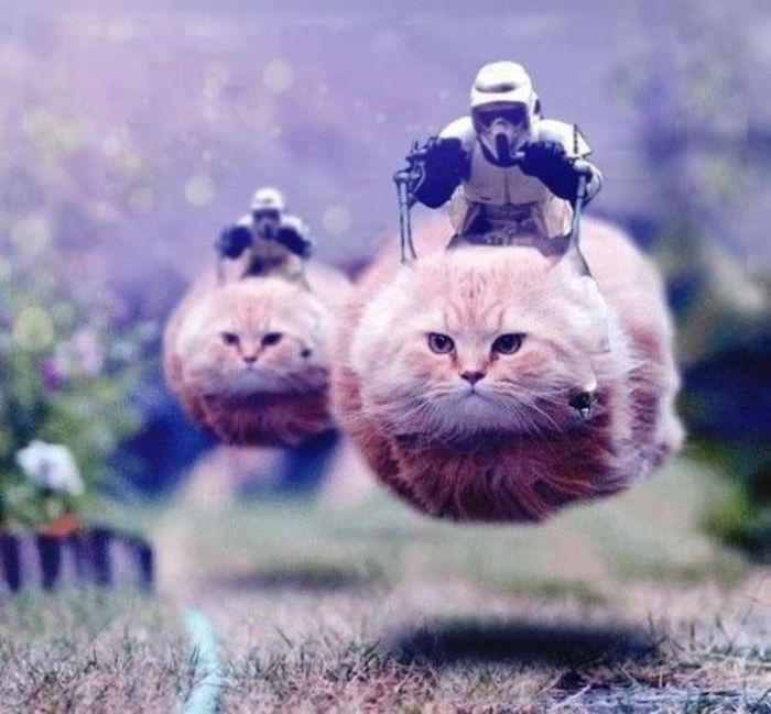 """Funny """"Star Wars"""" Pictures (38 pics)"""