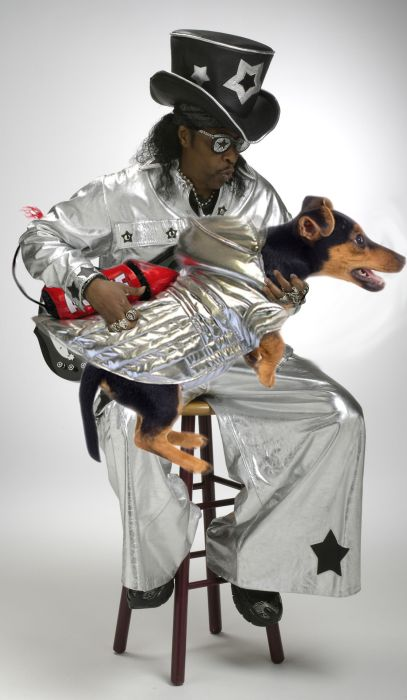 Bass Guitars Replaced by Dogs (29 pics)