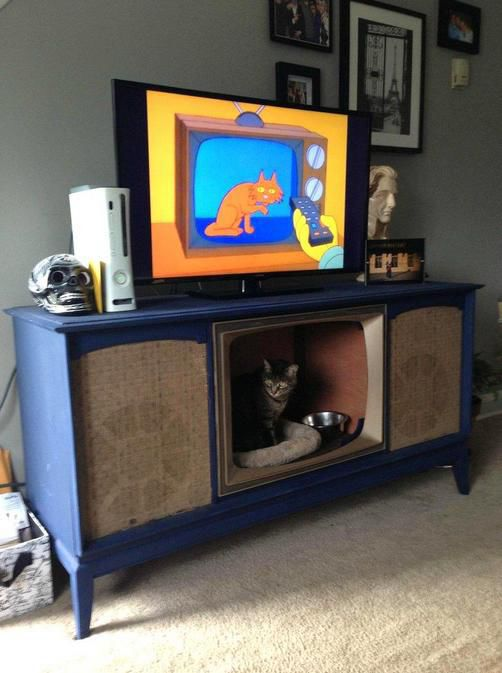 Awesome Pet Owners (20 pics)
