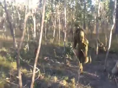 Soldiers Have Fun in The Forest