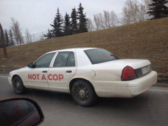 This Is Not Suspicious at All (65 pics)