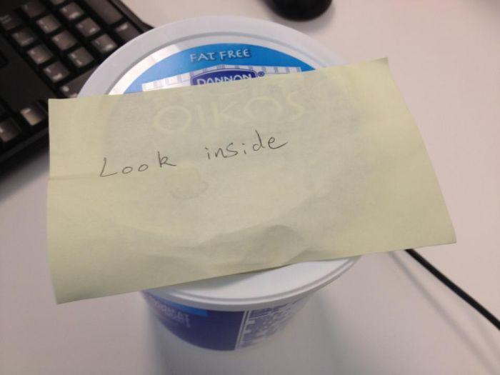 Yogurt Thief (3 pics)