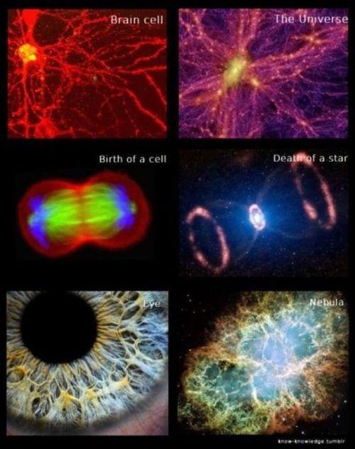 Amazing Images (42 pics)