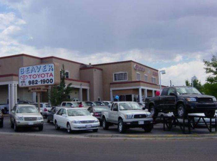 Funny Car Dealership Names (19 pics)