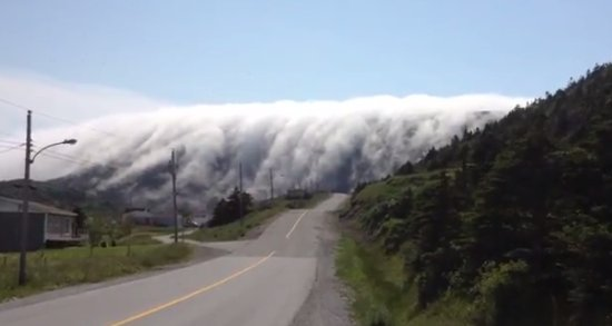 Amazing Mountain Fog
