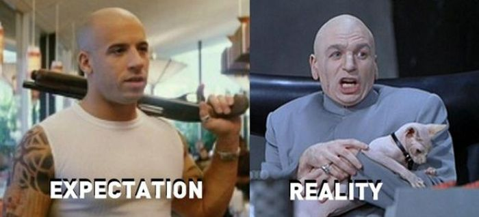 Expectation vs Reality (27 pics)