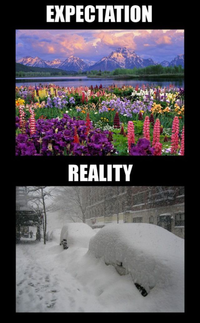Expectation vs Reality (27 pics)