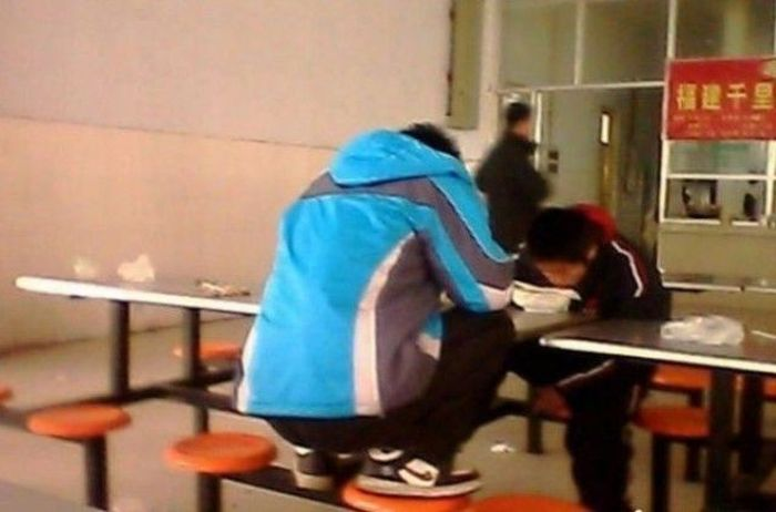 How Chinese Students Eat Lunch (6 pics)