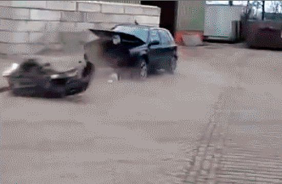 Idiots Fighting Things (20 gifs)
