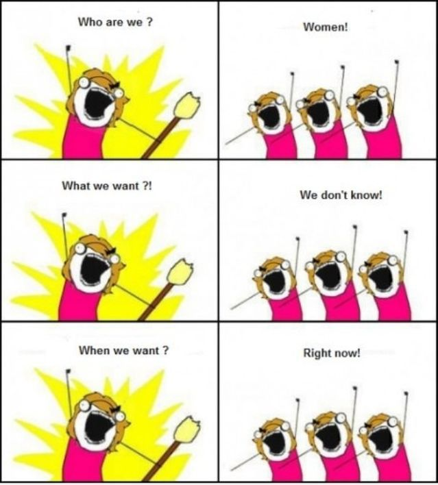 Female Logic (49 pics)